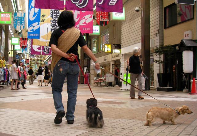 札幌 狸小路